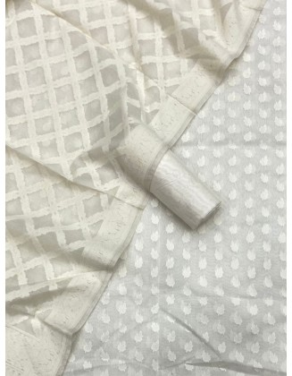 White Banarasi Patola Resham Weaved Suit
